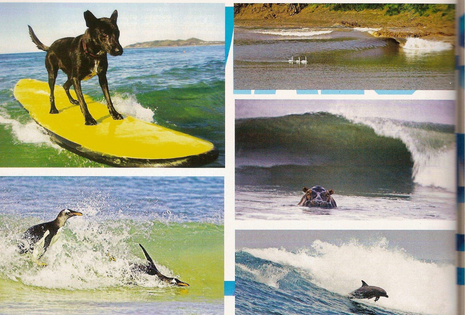 TRIP SURF mai.juin 2007 2