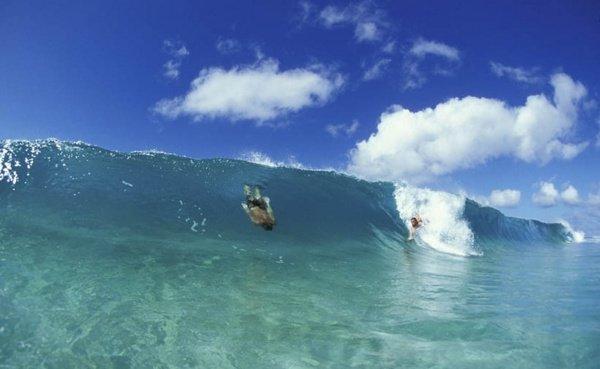 bodysurfing3.jpg